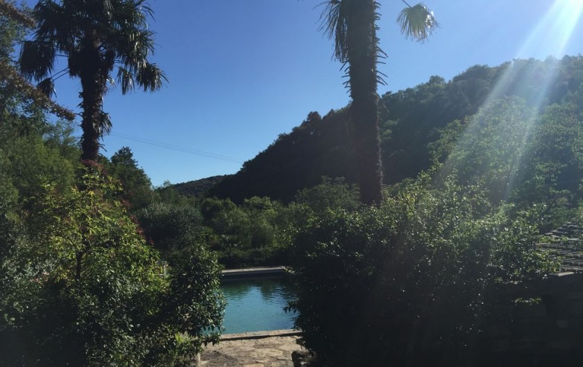 Location de vacances - Gîte à Saint-Vincent-d'Olargues - piscine au sel