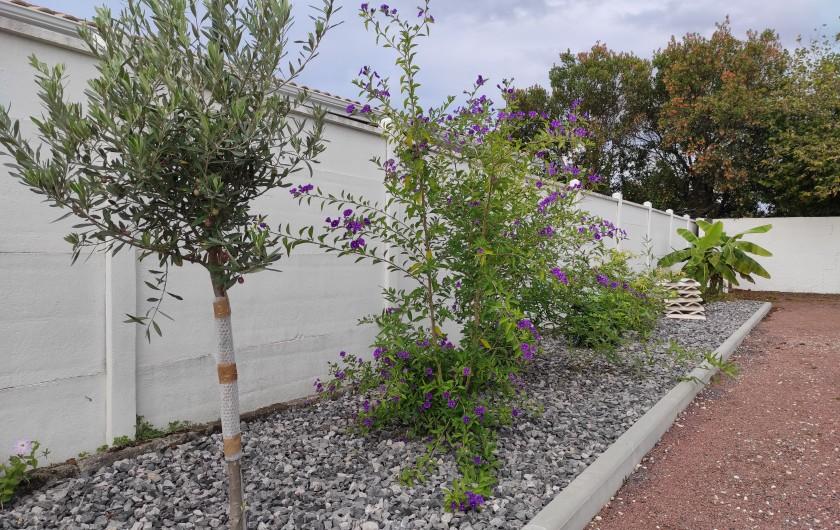 Location de vacances - Villa à La Teste-de-Buch - Situation sur le bassin