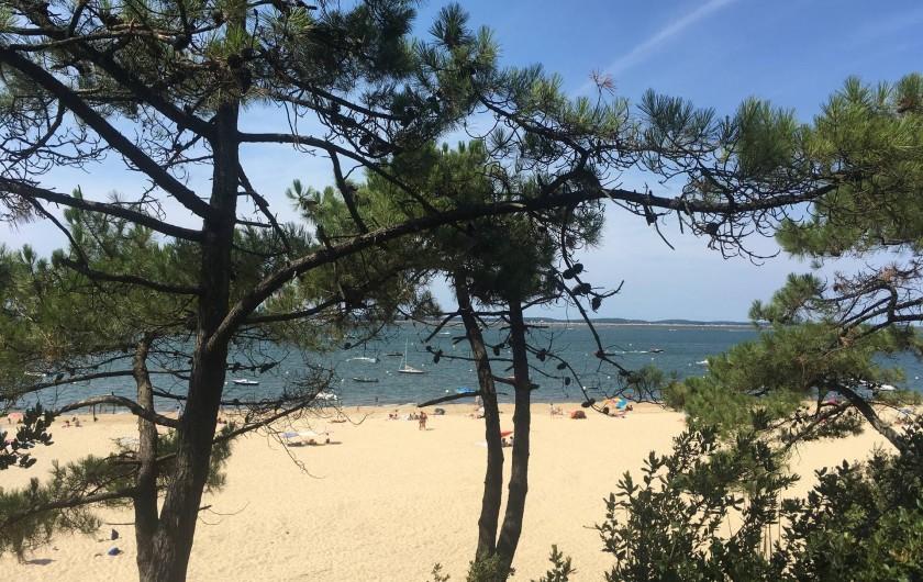 Location de vacances - Villa à La Teste-de-Buch - Plage et pins