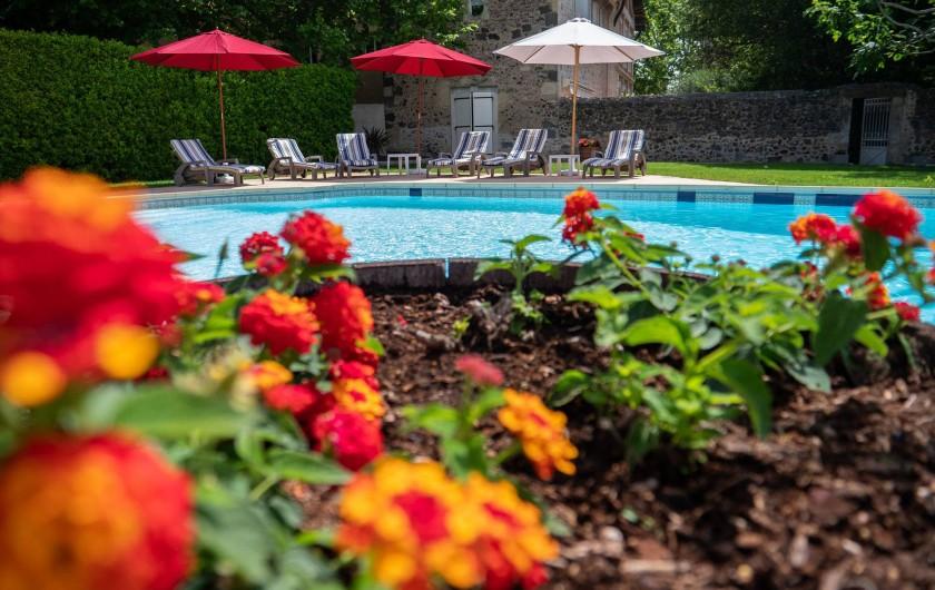 Location de vacances - Maison - Villa à Bessan - Flowers at the pool