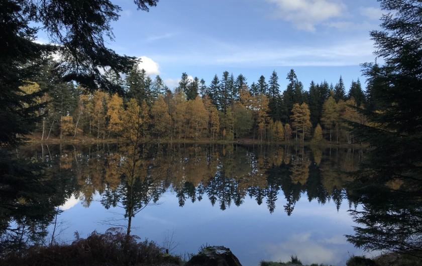 Location de vacances - Gîte à Raon-lès-Leau - Lac de la Maix