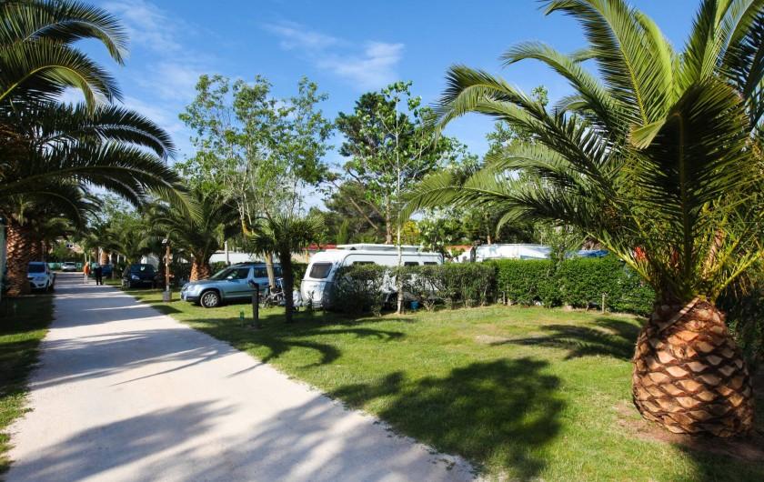 Location de vacances - Bungalow - Mobilhome à Agde - Emplacement