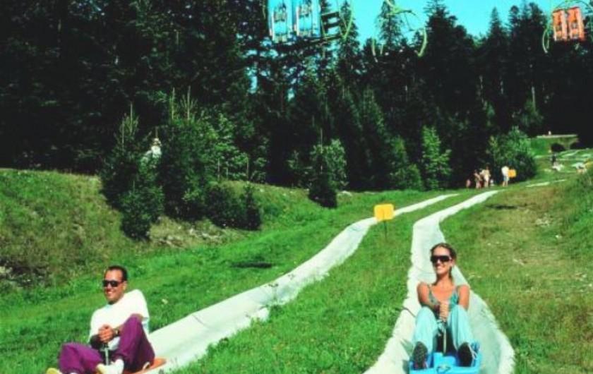 Location de vacances - Appartement à Xonrupt-Longemer - Luge d'été, vtt,équitation, quad, et de nombreuses activités estivales