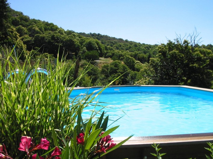 Location de vacances - Gîte à Rocles - Piscine