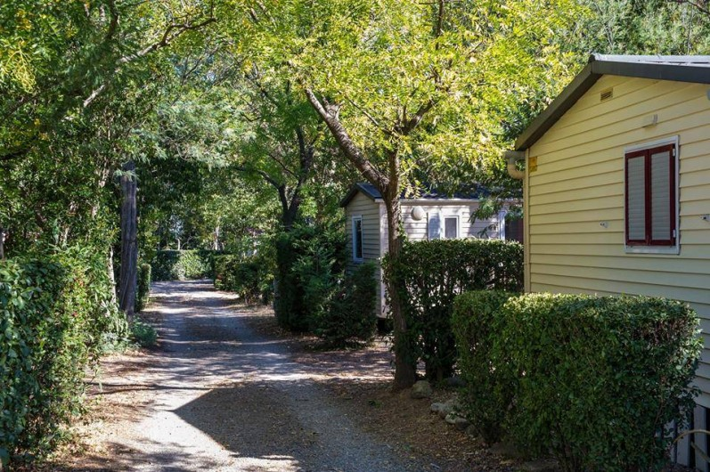 Location de vacances - Bungalow - Mobilhome à Céret - Allée