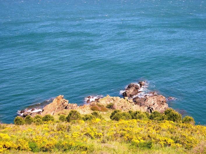 Location de vacances - Appartement à Cerbère - Le littoral