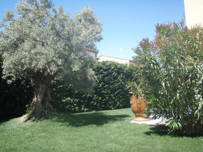 Location de vacances - Villa à Aix-en-Provence - Joli jardin paysager côté Ouest avec un magnifique olivier et un laurier rose