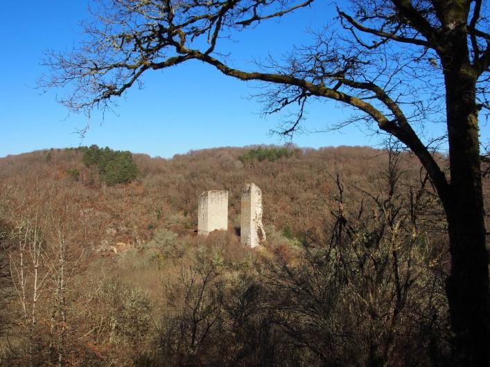 Location de vacances - Chalet à Saint-Gérons - Tours de Carbonnières  à 25 minutes du chalet