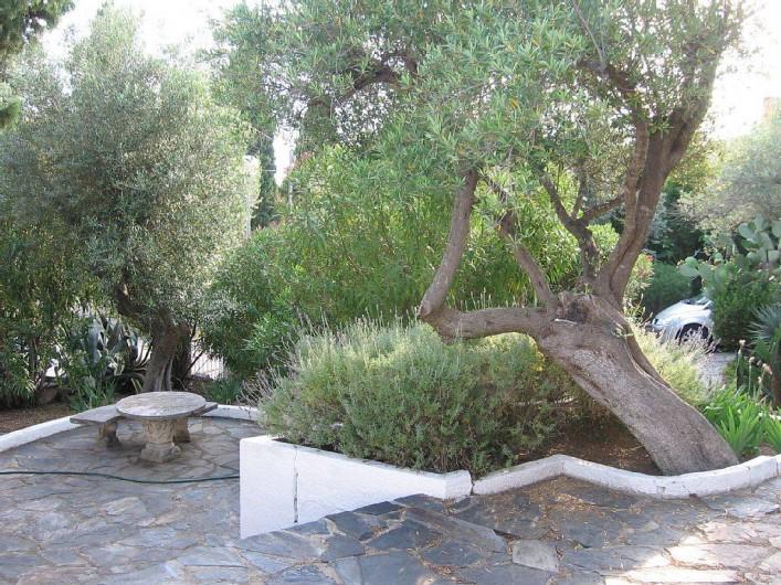 Location de vacances - Villa à Roses - Vue sur terrasse du bas ombragée. Au fond à droite allée pour les voitures