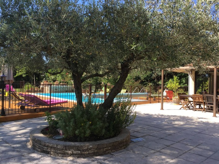 Location de vacances - Villa à Vézénobres - l'olivier central terrasse extérieure