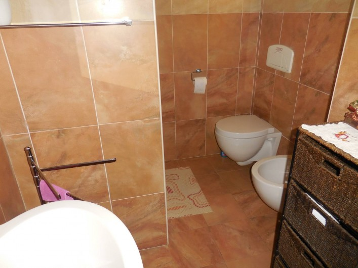 Location de vacances - Appartement à Guardistallo - Sallr de bain  (douche, Lavabo, bidet, WC)