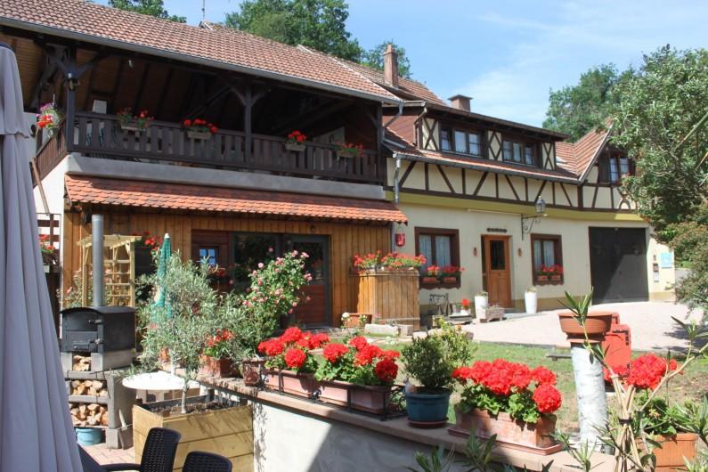 Location de vacances - Gîte à Nothalten - Hiver au gîte  2017