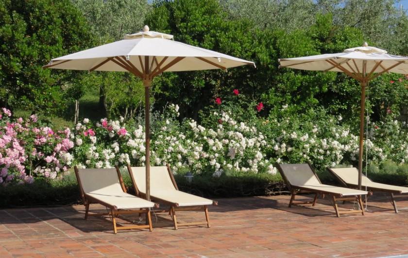 Location de vacances - Appartement à Greve in Chianti - A la piscine