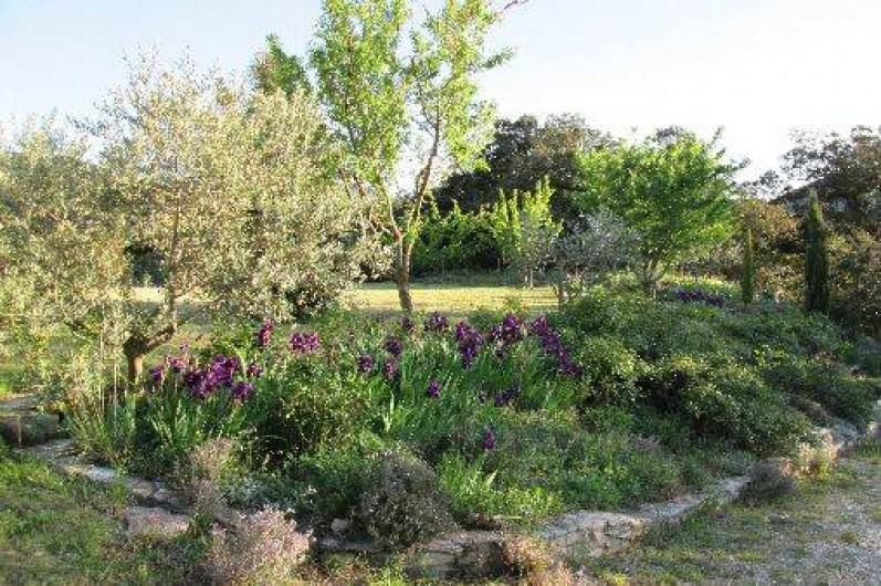 Location de vacances - Villa à Roche-Saint-Secret-Béconne - Le chemin au printemps.