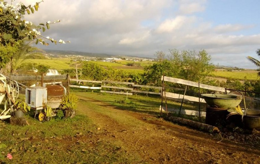 Location de vacances - Gîte à La Saline Les Hauts - la vue à votre arrivée