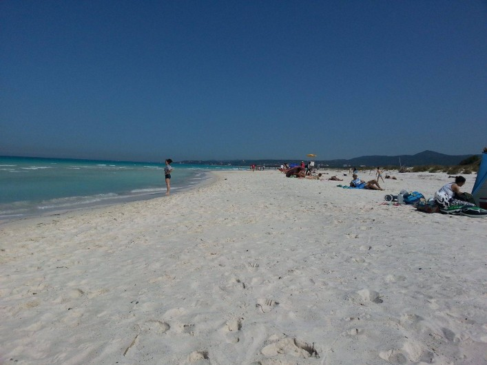 Location de vacances - Appartement à Cecina - la plage publique