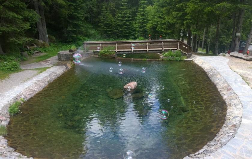 Location de vacances - Appartement à Saint-Martin-Vésubie - pêche à la truite au Boréon à 10 mn en voiture