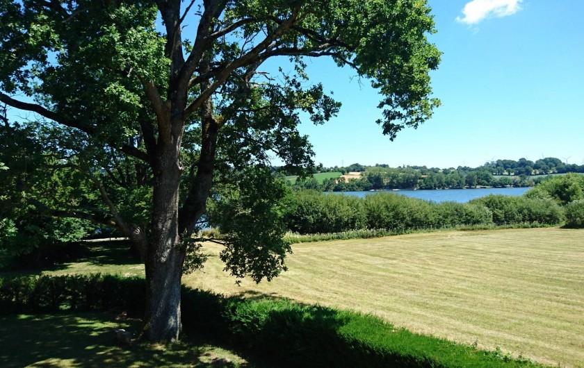 Location de vacances - Gîte à Alrance - Chêne centenaire à l'ombre duquel vous pourrez vous reposer