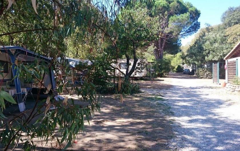 Location de vacances - Camping à Argelès-sur-Mer