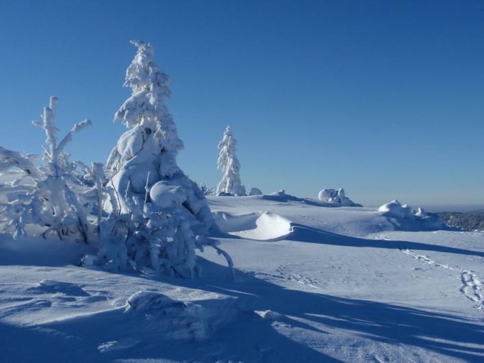Location de vacances - Gîte à Orbey - Paysage hivernal sur les crêtes