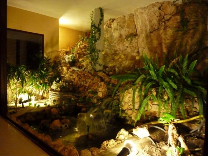 Location de vacances - Villa à Altea - étang et cascade donnant sur le salon