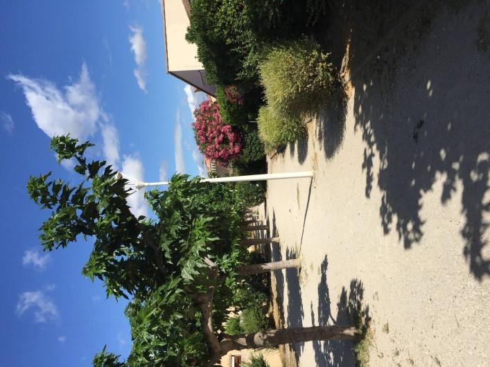 Location de vacances - Maison - Villa à Leucate - paysage des allées de la ville