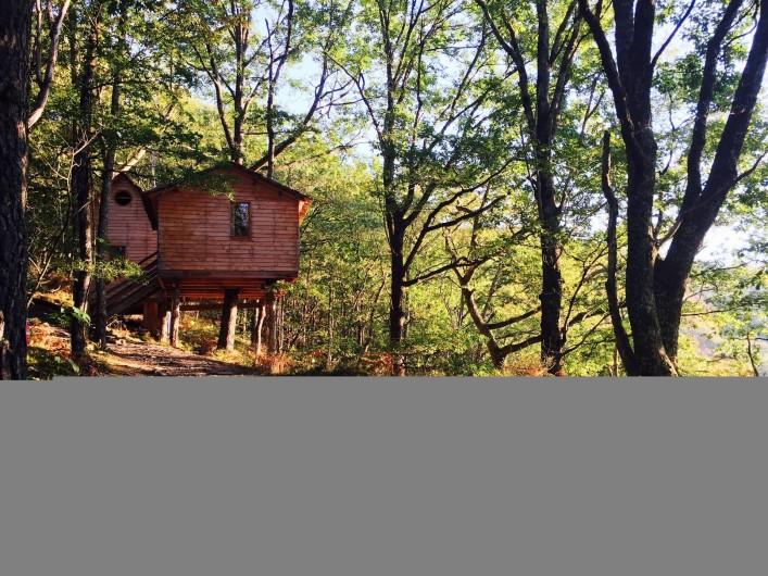 """Location de vacances - Chambre d'hôtes à Saint-Martial-Entraygues - Cabane Familiale 4 à 6 personnes - """"Des Chesnaies"""""""
