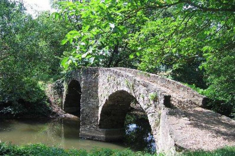 Location de vacances - Gîte à Cordes-sur-Ciel - Le pont des ânes
