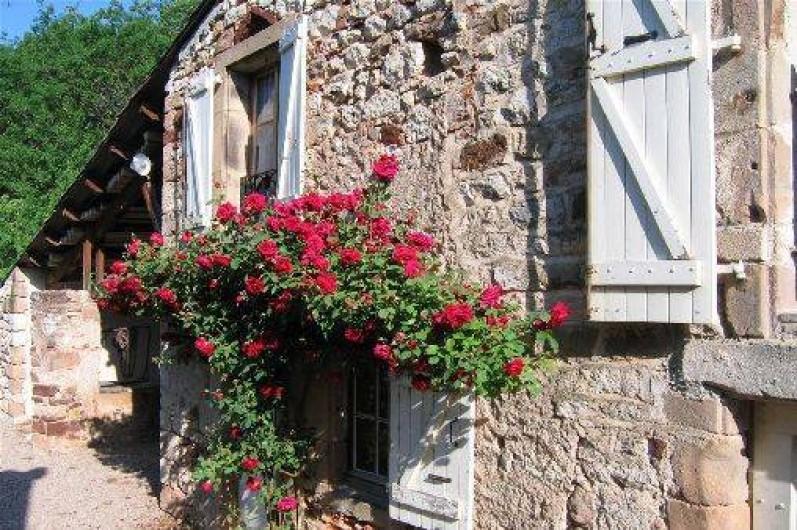 Location de vacances - Gîte à Cordes-sur-Ciel - La façade vue du pré