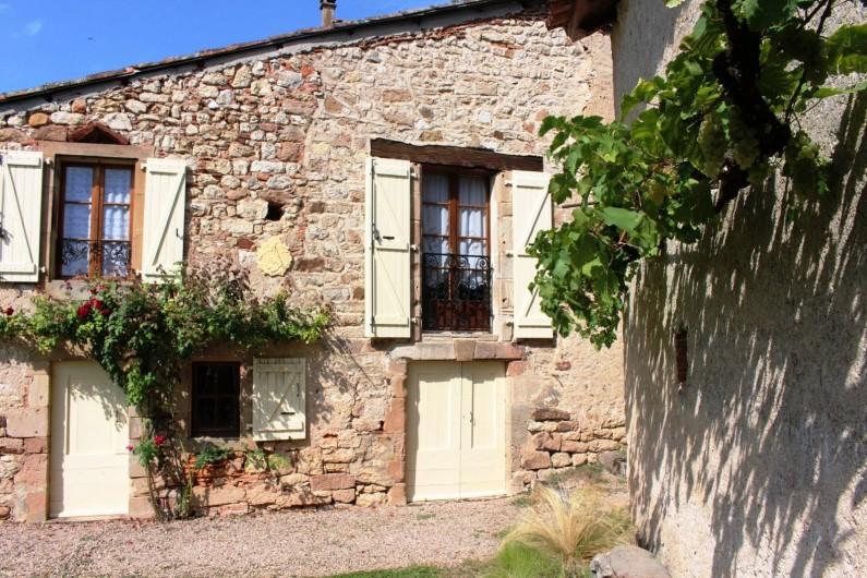 Location de vacances - Gîte à Cordes-sur-Ciel - La treille et ses raisins