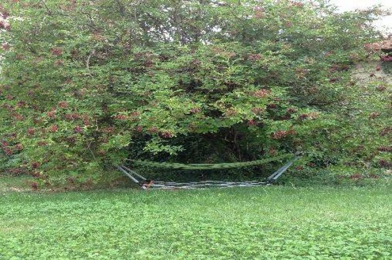 Location de vacances - Villa à Violes - Hamac à l'ombre du sureau