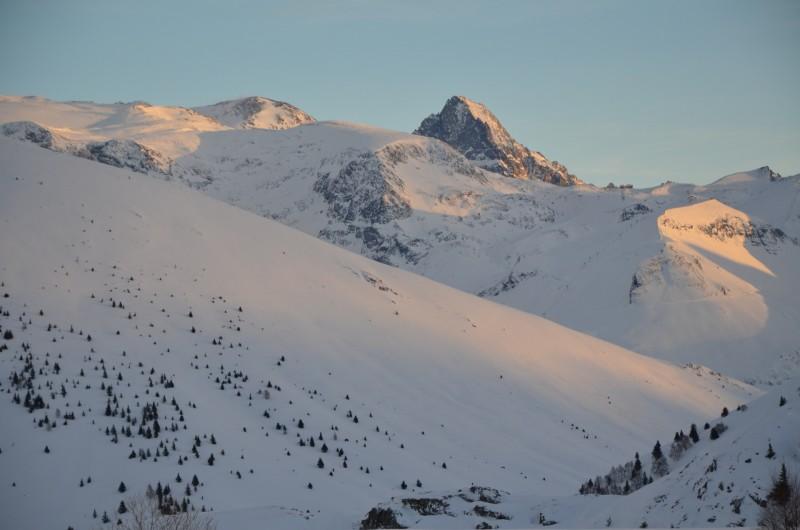 Location de vacances - Studio à L'Alpe d'Huez - le Pla de la Selle