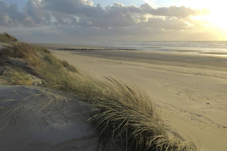 Location de vacances - Appartement à Fort-Mahon-Plage - Baie d'Authie, mer et dunes