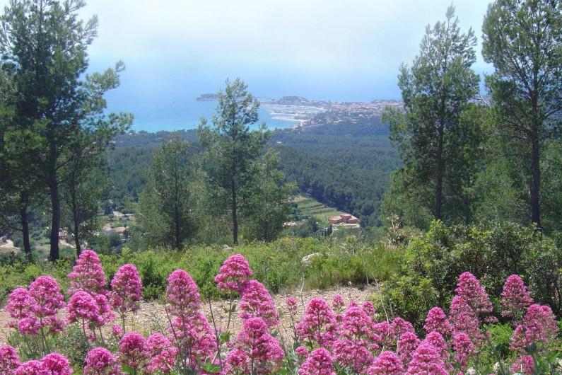 Location de vacances - Appartement à Sanary-sur-Mer - SANARY - C'est aussi un arrière-pays très verdoyant où il fait bon randonner