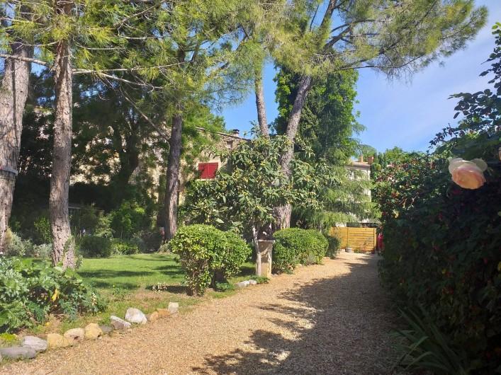 Location de vacances - Gîte à Roujan - Allée menant au gîte.