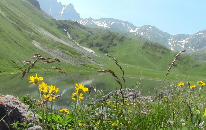 Location de vacances - Appartement à Valloire - Balade des 4 lacs, une magnifique journée en perspective avec pic-nic!