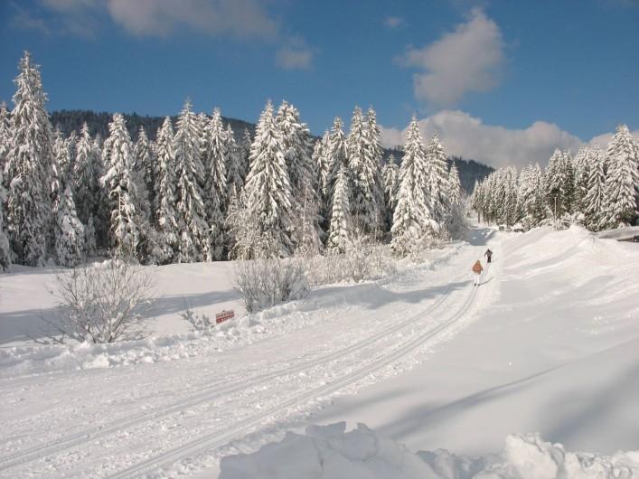 Location de vacances - Chalet à Basse-sur-le-Rupt - Balade en ski de fond