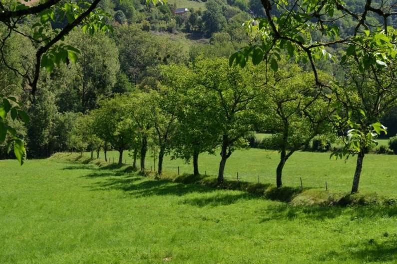 Location de vacances - Gîte à Villecomtal - vue du gite