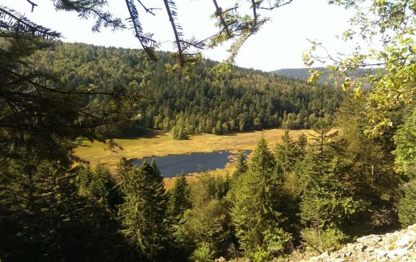 Location de vacances - Chalet à La Bresse - Tourbière de Machais
