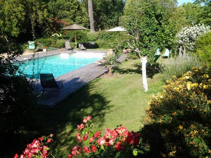 Location de vacances - Chambre d'hôtes à Saint-Thomas - La piscine vue du massif de millepertuis