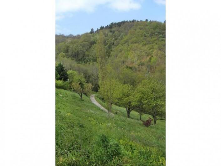 Location de vacances - Gîte à Saint-Étienne-de-Serre - L'Ardèche coin de nature
