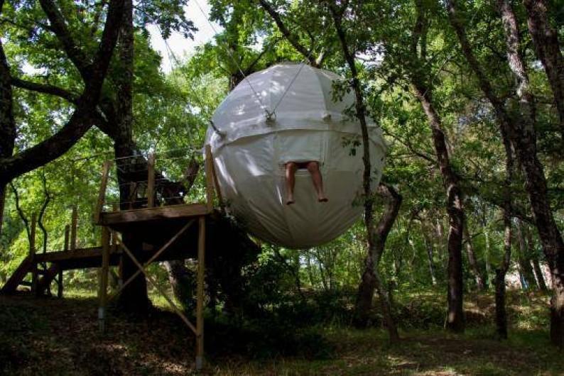 Location de vacances - Yourte à Barjac - Cocoon Tree : une grosse tente sphérique suspendue dans les arbres