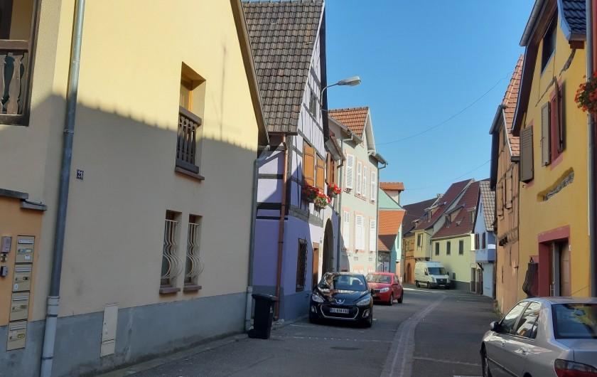Location de vacances - Gîte à Ingersheim - La rue avec le 24 a gauche