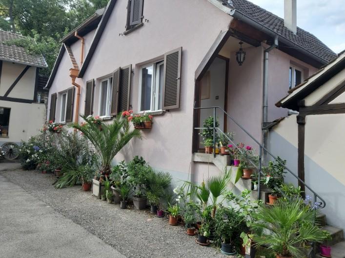 Location de vacances - Gîte à Ingersheim - Le  gite