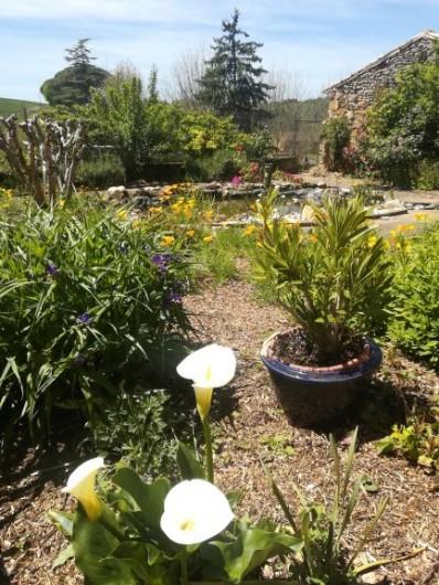 Location de vacances - Chambre d'hôtes à Saint-Avit-Sénieur - Le jardin