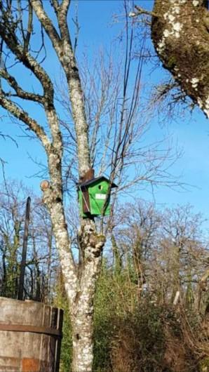 Location de vacances - Gîte à Lassouts - La cabane des oiseaux