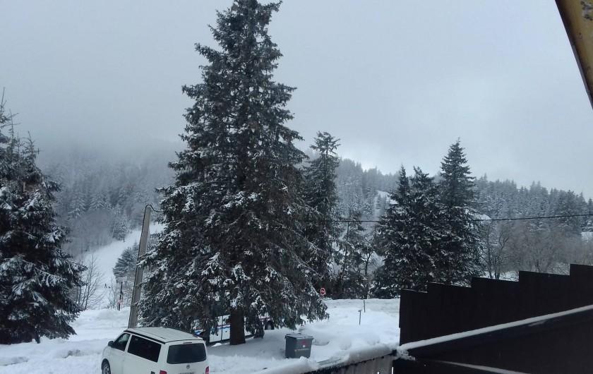 Location de vacances - Appartement à Orbey - vue sur les pistes de ski alpin