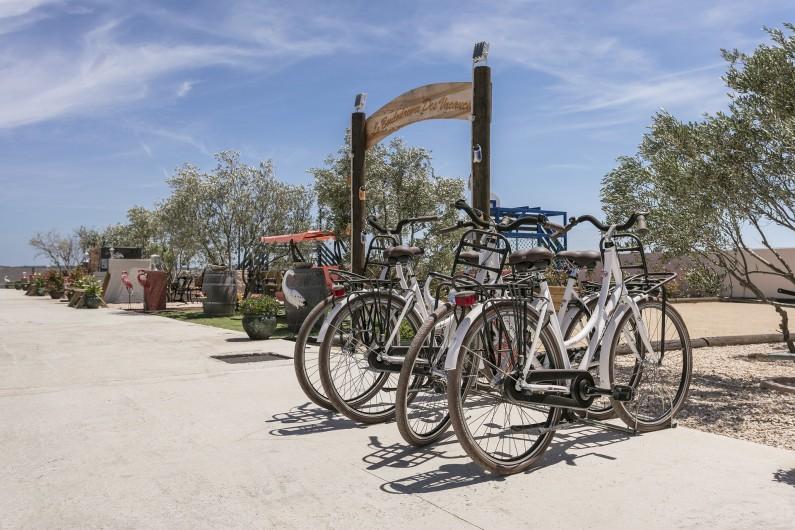 Location de vacances - Gîte à Pézenas - Prêt de vélos (Gratuit)