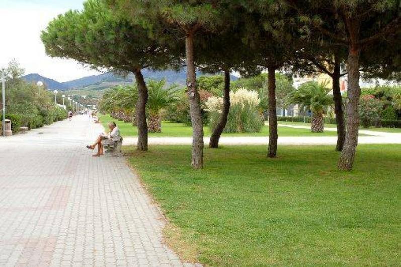 Location de vacances - Appartement à Argelès-sur-Mer - La promendae