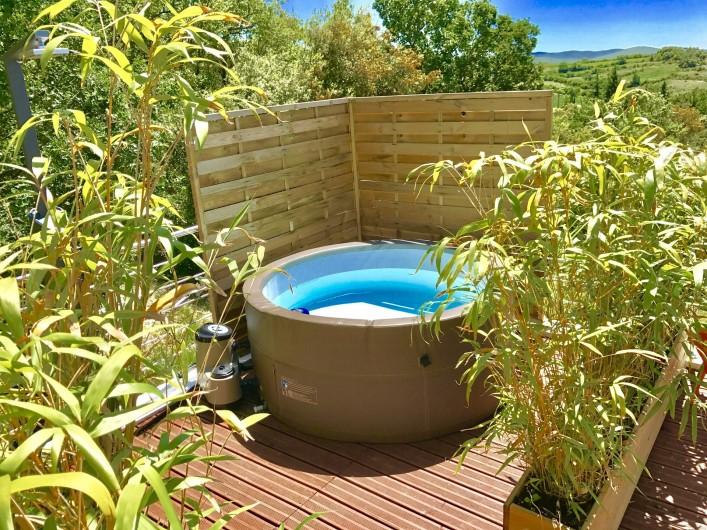 Location de vacances - Villa à Barjac - Le SPA